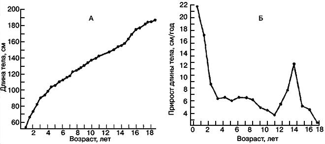 Рис. VI. 1. Увеличение длины тела сына де Монбейяра с момента рождения (1759 г.) до 18 лет. А - длина тела; В - скорость роста (годичный прирост длины тела)