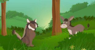 The-donkey.